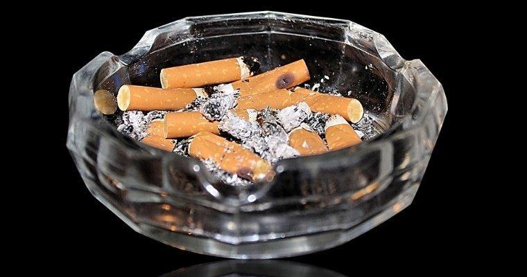 Табачные изделия ижевске сигареты оптом в москве от производителя