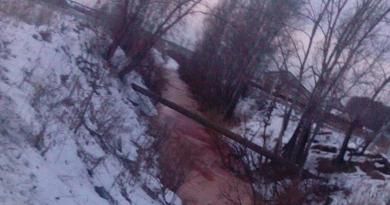 Жители Тюменской области сообщают об экологическом загрязнении реки Молчанка (ФОТО)