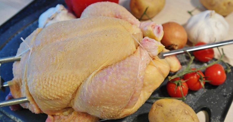 ВКурумоче выявлен птичий грипп