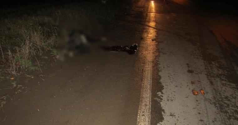 Два пешехода погибли на трассах Удмуртии вечером 17октября