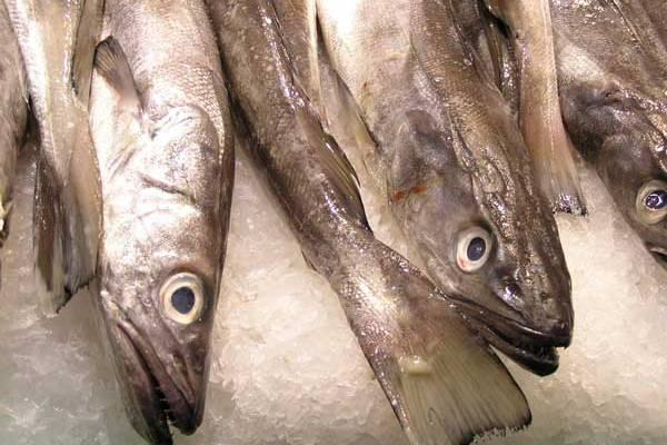 к чему снится рыба на рынке засоленая несвежая профессионального образования