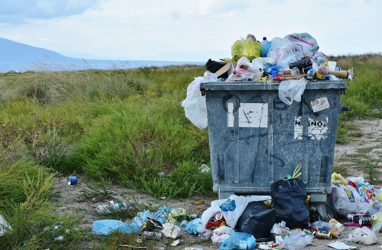 Минпромторг России не поддержал инициативу Белоруссии по запрету пластиковых пакетов в ЕАЭС
