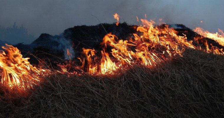 Два природных пожара случилось вУдмуртии замайские праздники