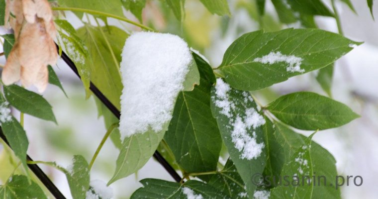 Синоптики сказали , какая погода ожидает  граждан  Башкирии 6, 7 и8ноября