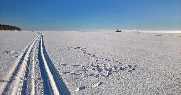 ВИжевске пройдет Международный лыжный марафон