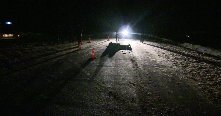 Заминувшие сутки на трассах Удмуртии врезультате дорожно-траспортного происшествия погибли два пешехода