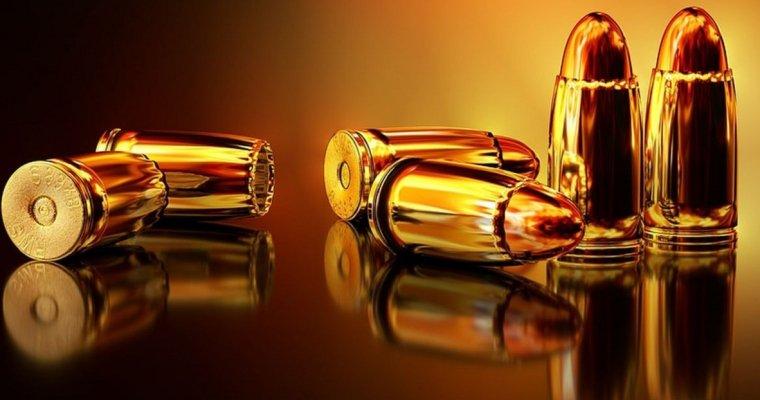 «Мыпредотвратили катастрофу»: школьница изМэриленда планировала массовое убийство