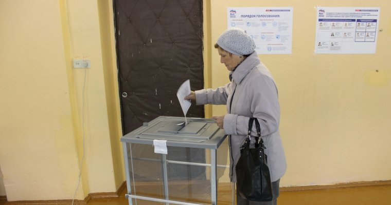 Явка набрянские праймериз составила 13,9%