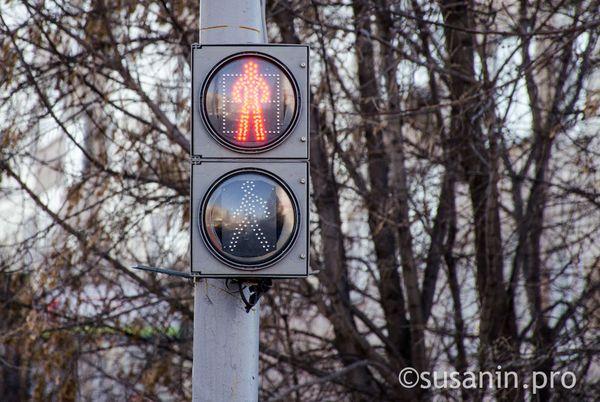 бланк заявления на установку светофора