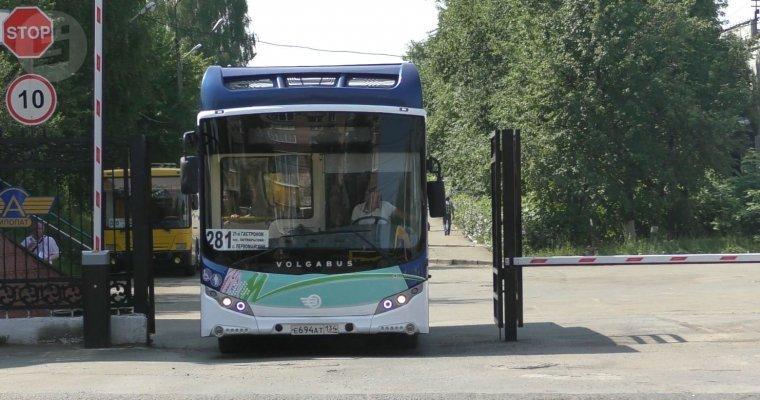 ВИжевске появился новый вид транспорта
