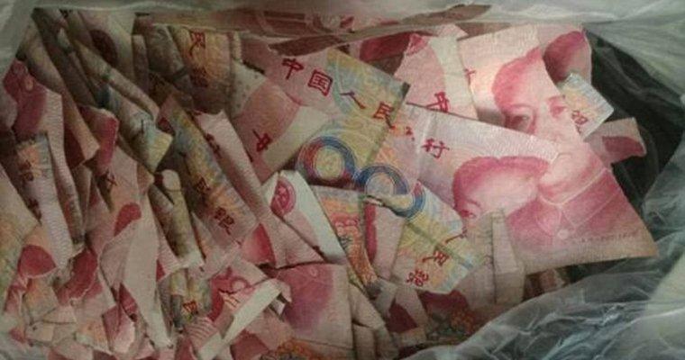 Пятилетний сын разорвал наклочки спрятанные родителями 7 тыс. долларов