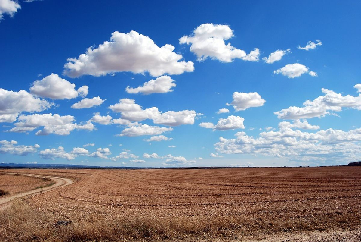 ВУдмуртии только треть земельных участков имеет границы