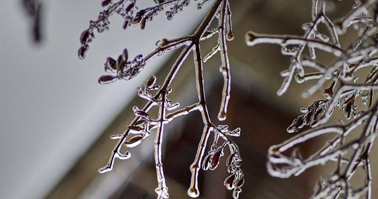 Снег иледяной дождь обрушатся наЦентральную Российскую Федерацию